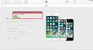 windowsvista-iphone71