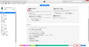 windowsvista-iphone73
